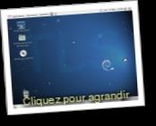 Debian (Distribution Gnu Linux)
