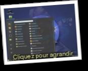 Mint Cinnamon (Distribution Gnu Linux)