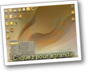 Toutou Linux (Distribution Gnu Linux)