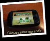 Angry Birds Seasons Free (Jeu : Arcade)