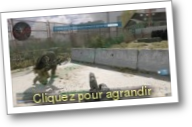 Call Of Duty : Warzone (Jeu : FPS)